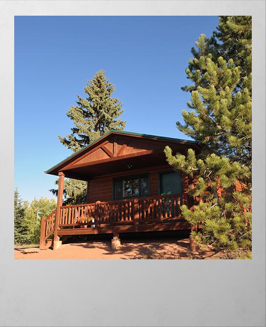 Woodland Park cabin polaroid