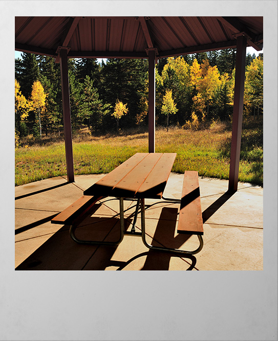 Picnic area Woodland Park Colorado