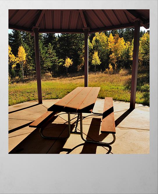 Picnic area Woodland Park Colorado