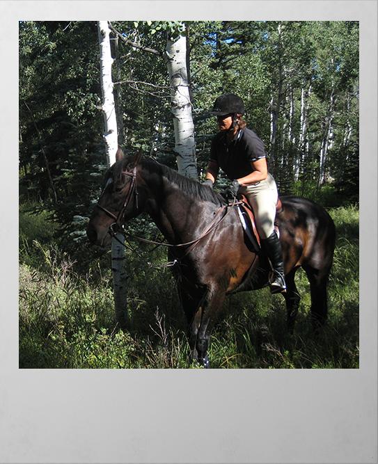Horsback Rider in Woodland Park Colorado